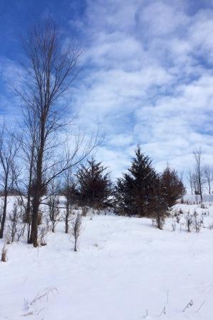 Snow at Baker Park