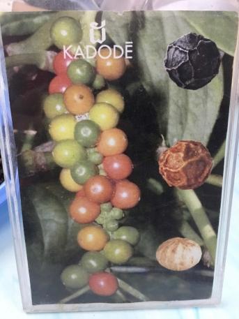 blog-kampot-kep-3-of-12
