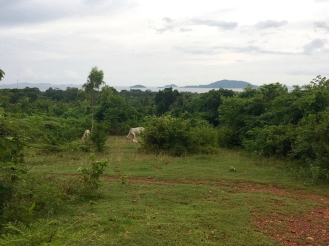 blog-kampot-kep-30-of-32