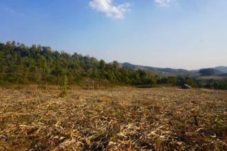 Blog Hsipaw-Pyin Oo Lio - 16 of 74