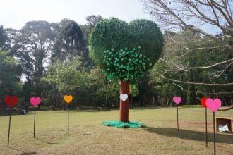 Blog Hsipaw-Pyin Oo Lio - 70 of 74