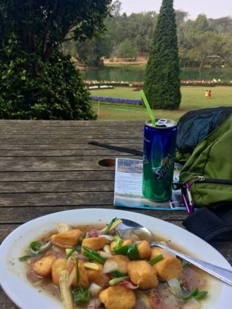 Blog Myanmar food - 47 of 105