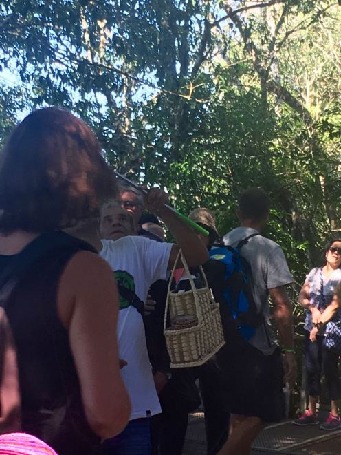 Iguazu (1) - 39 of 86